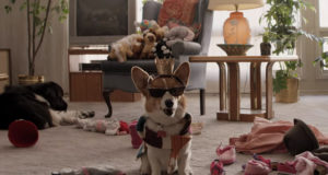 A Dog's Purpose – Movie Review